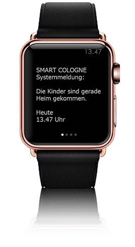 Smart Home Profis Köln